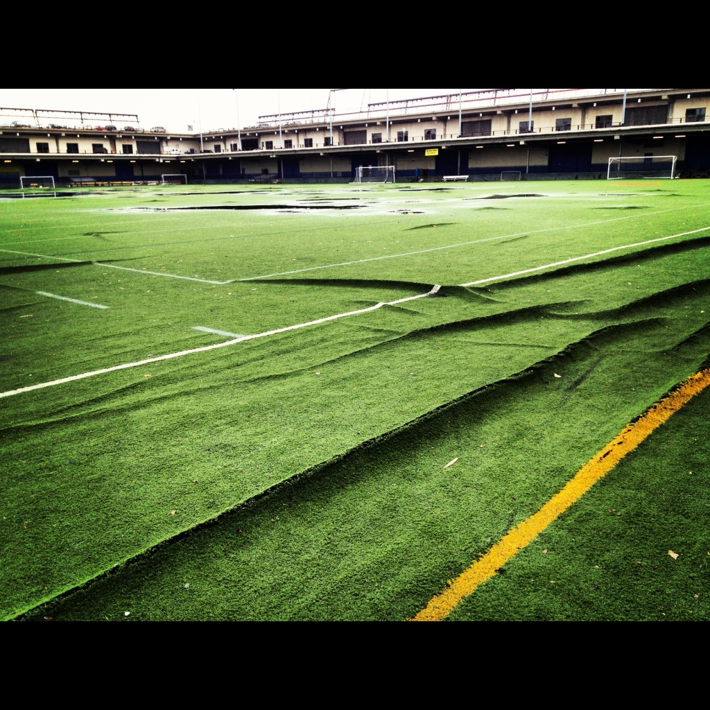 Our Beloved Field